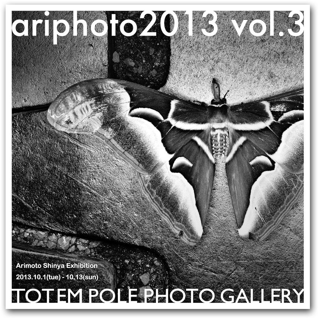 ariphoto2013_3
